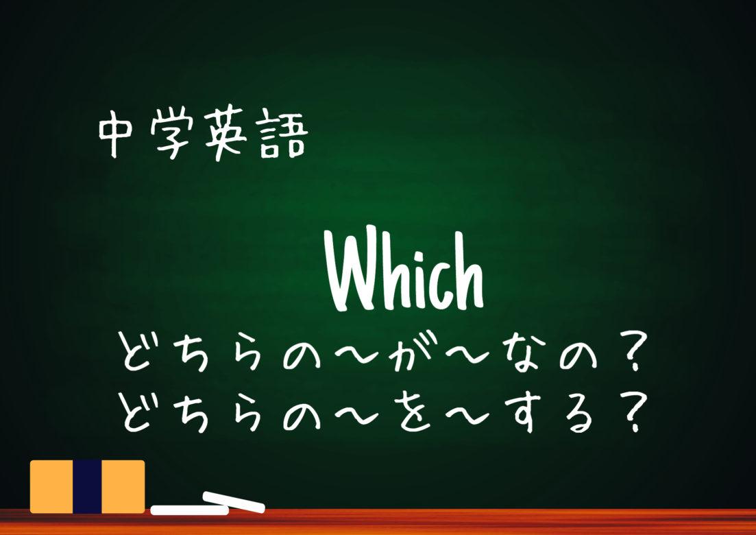【中学英語】疑問詞Whichの用法 細かい注意点など解説